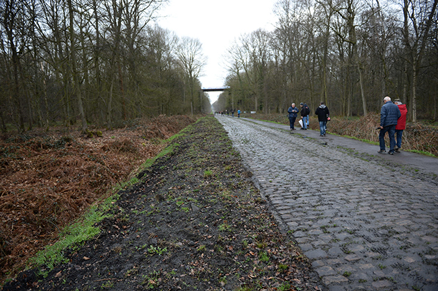 Arenberg sector
