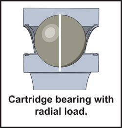 cartridge bearing iwth radial load